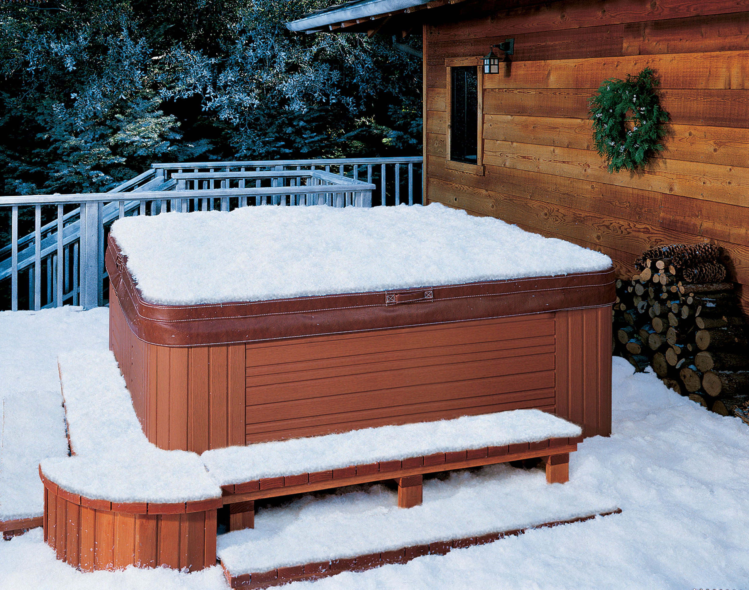 snow day spa day buddy pool and spas. Black Bedroom Furniture Sets. Home Design Ideas